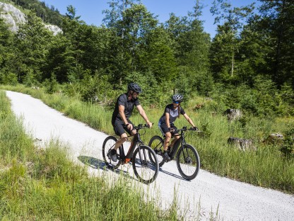 Zwei Radfahrer in der Natur mit KTM-Bike. (Foto: KTM bike industries)