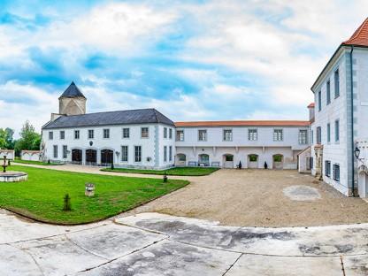 Blick auf das Schloss Viehofen aus dem Innenhof. (Foto: Arman Kalteis)