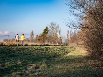 Spaziergängerinnen am Traisendamm. Im Hintergrund sind Regierungsviertel und Klangturm zu sehen (Foto: Arman Kalteis).