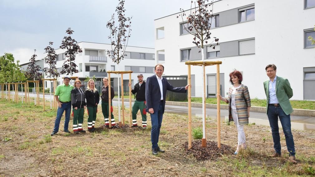 Acht Personen bei einer neu gepflanzten Baumallee beim Wohnbau der gemeinnützigen Bau-, Wohn- und Siedlungsgenossenschaft Alpenland in der Gerdinitschstraße. (Foto: Josef Vorlaufer)