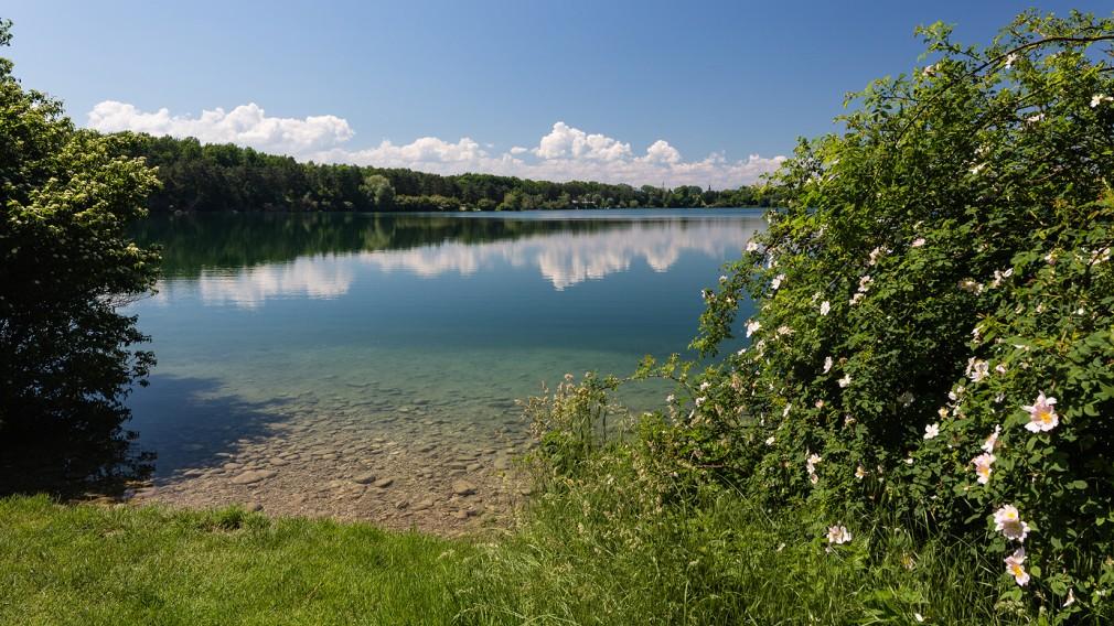 Blick auf Viehofner See. (Foto: Arman Behpounia).