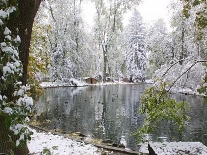 Blick auf Teich im Hammerpark mit leichter Schneelage. (Foto: Josef Vorlaufer)