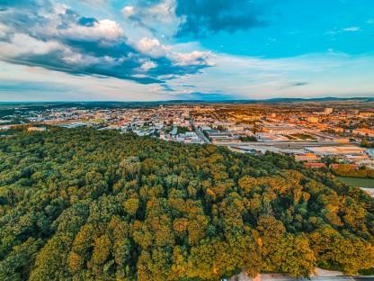 Luftaufnahme Stadtwald und bebautes Stadtgebiet. (Foto: Arman Kalteis)