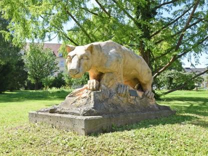 Altoona-Puma im Altoona-Park in St. Pölten. (Foto: Josef Vorlaufer)