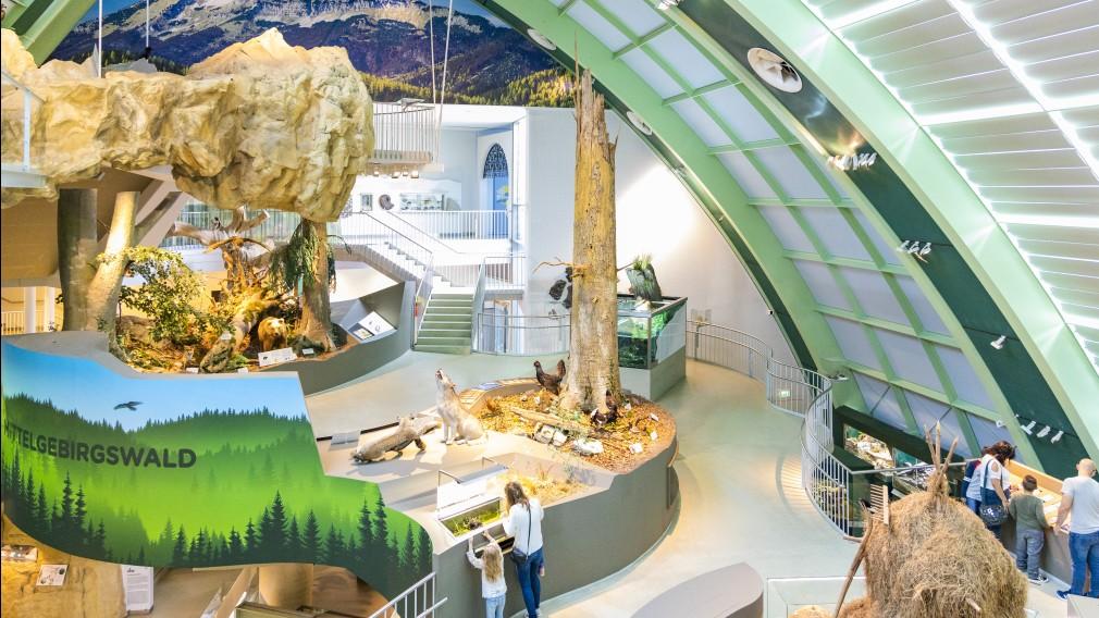 Das Haus der Natur von innen ist zu sehen. Das Bild wurde von weiter oben aufgenommen und zeigt fünf Besucher und Besucherinnen darunter zwei Kinder, die die Ausstellung bestaunen. (Foto: Theo Kust)