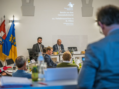 Plenum des Verkehrsausschusses im Gemeinderatssitzungssaal. (Foto: Kalteis)