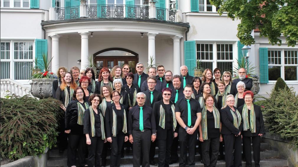 Der Stadtchor vor der Villa im Südpark. Alle sind in schwarz gekleidet. Die Männer tragen grüne Kravatten, die Frauen grüne Schals. (Foto: Stadtchor St. Pölten)