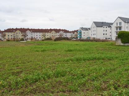 Das Areal der künftigen Baurechtsgründe im Stadtteil Eggendorf. (Foto: Josef Vorlaufer)