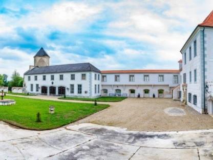 Blick auf Schloss Viehofen. (Foto: Arman Kalteis).