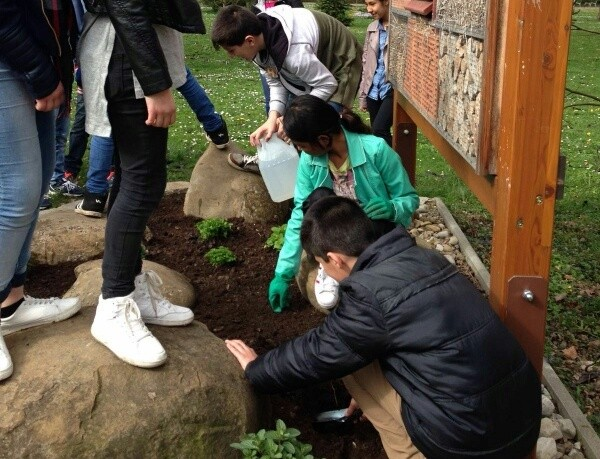 Kräutergarten im Hammerpark neu bepflanzt